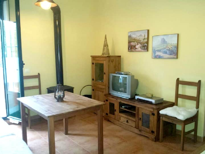 Apartment with 2 bedrooms in Aracena, with wonderful mountain view and furnished terrace