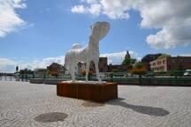 City of Oudenaarde (5 km)