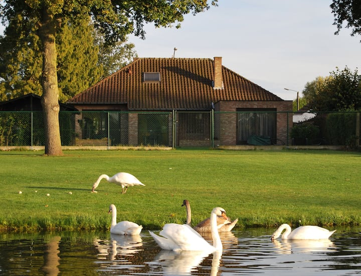 Large detached Villa with garden lake view.