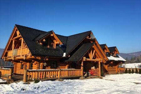 Luxurious log house