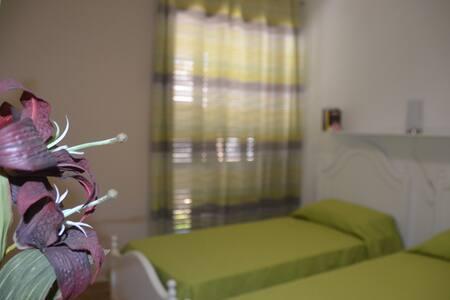 B&B Anacleto - Salice Salentino - Haus