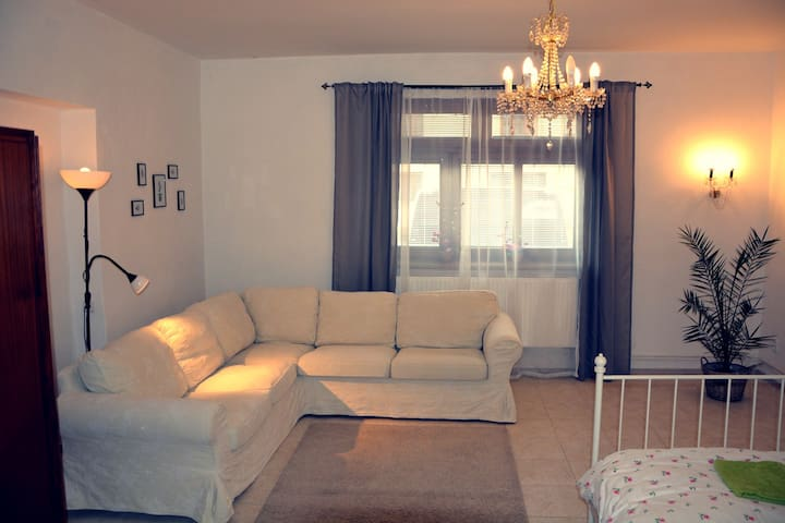 Cosy & central Písek apartment. Enjoy the history!