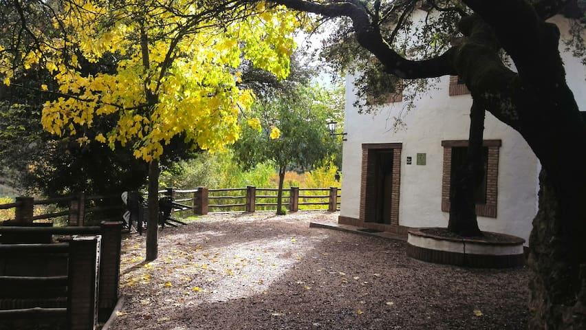 Cortijo la Besana (8/10) en Parque de Cazorla.