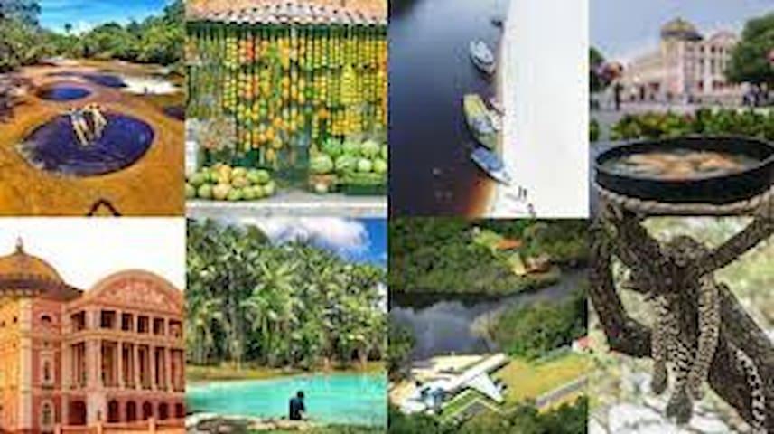 Amazonas - Terra de prazeres naturais