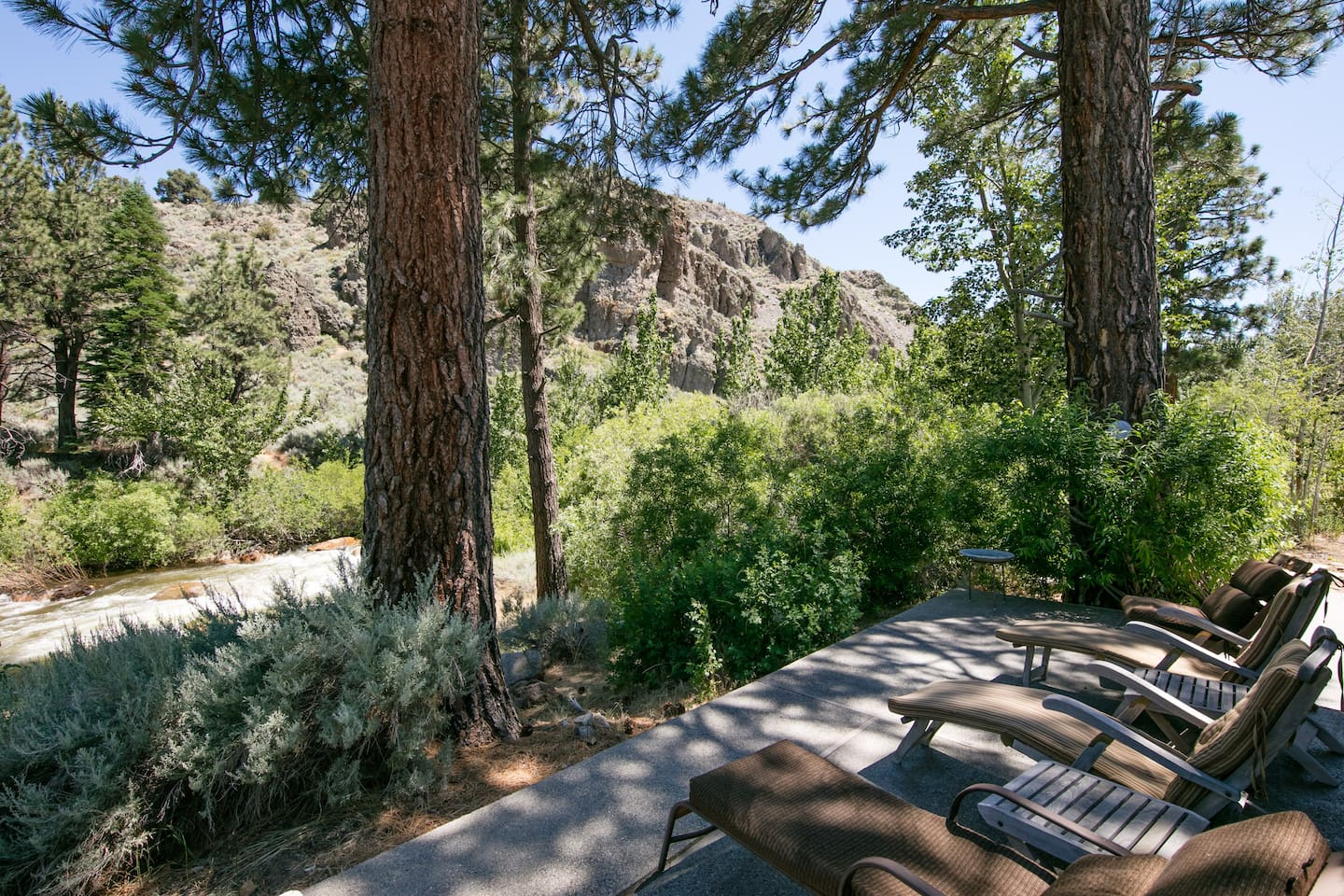 Patio under the cool pines, overlooking the West Fork of the Carson River.   Very quiet, lots of privacy