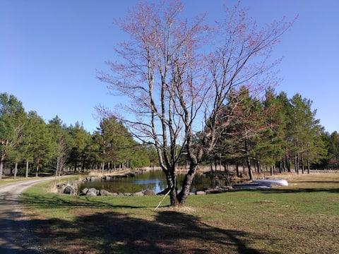 Silver Creek Loft near Two Harbors