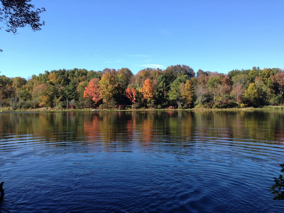 More local fall color and beauty. Mill Pond in West Newbury, just 15 minutes away.
