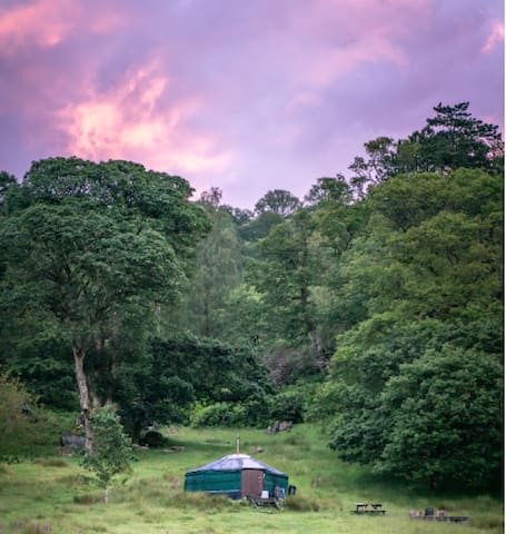 Cosy Traditional Yurt in lush parkland, Rydal 2
