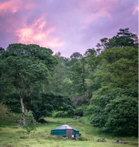 Rydal Y2, Cosy Traditional Yurt in lush Woodland
