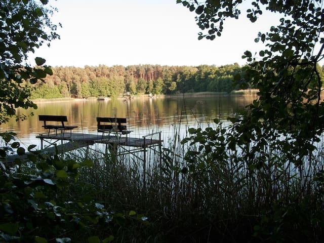 Idyllische Datscha im Wald am See