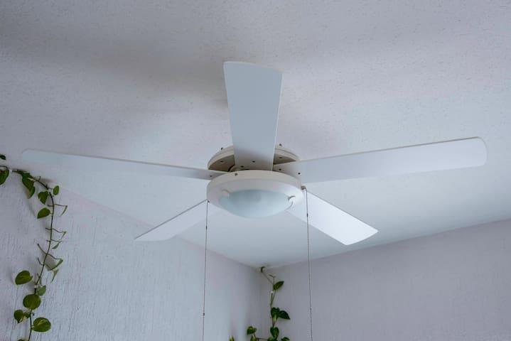 Ventiladores en todo el departamento / Fans all over the apartment