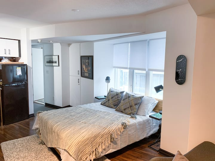 Cute & Cosy studio In Heart of Downtown Toronto