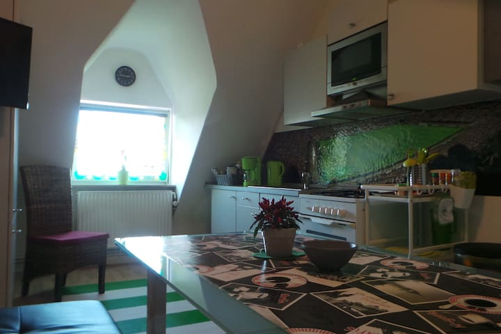 "Apartment ""Green Apple"", Nähe Zentrum & Messe"