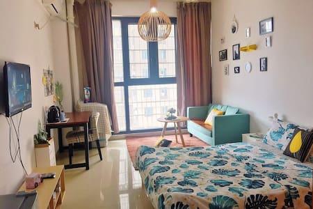 娄底市娄星区五洲富隆小区北欧风格单身公寓