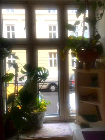 Private cosy Studio next to central station - Oslo - Appartement