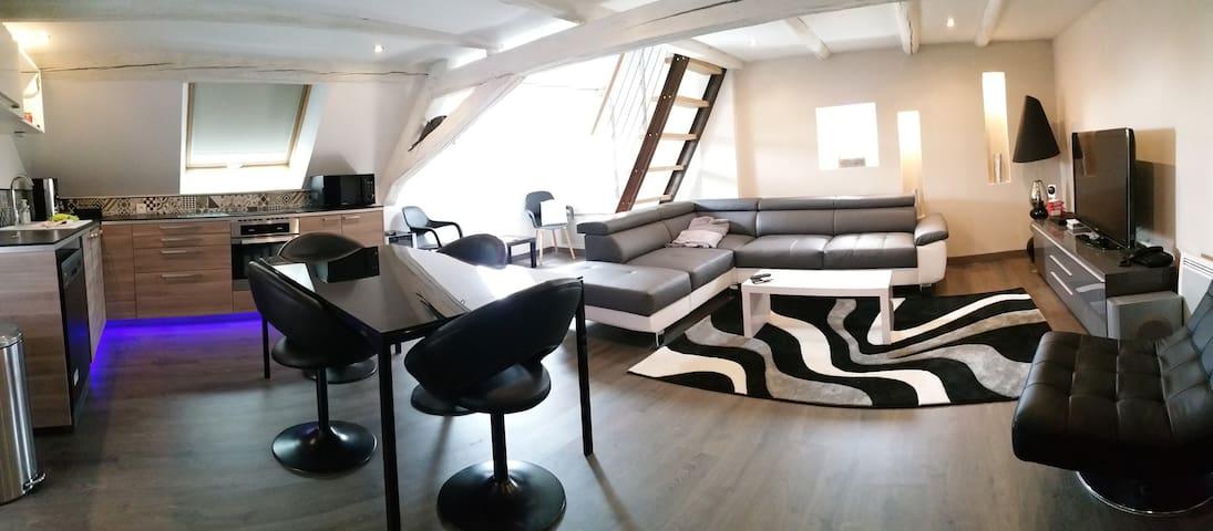 Appartement moderne, atypique et équipé