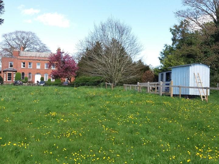 Sutton Court Shepherd's Hut