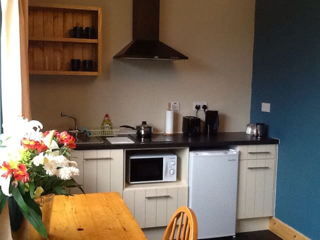 Apt in Ballyferriter village - Ballyferriter  - Appartement