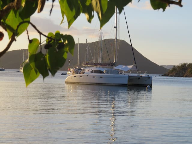 Private catamaran cruise BVI and USVI - Road Town - Boot