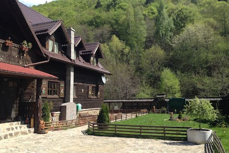 Romanian traditional house of rustic elegance - Săliște