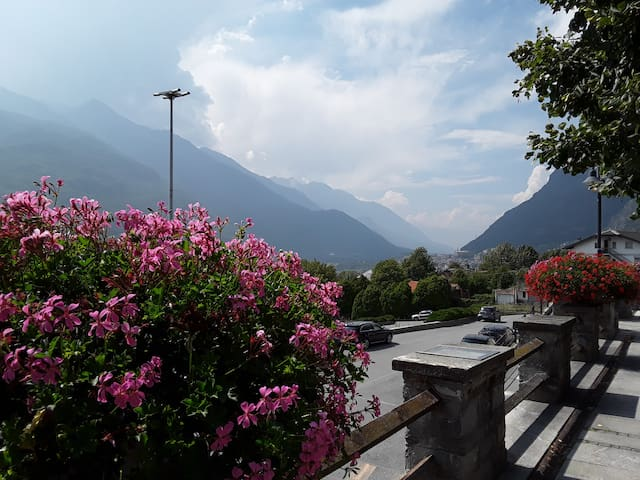 veduta panoramica dal viale alberato