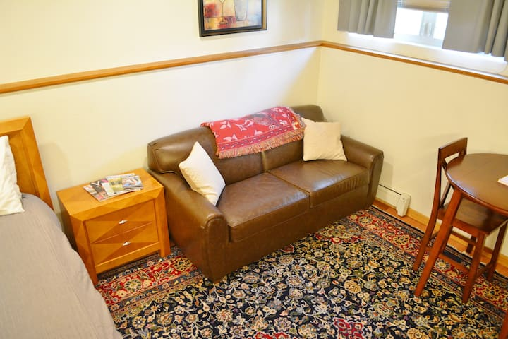 Sofa sleeper with pull out full sized bed; two person table.