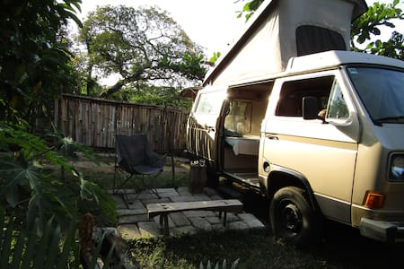 CASA Corteza; Adorable 85 VW WESTFALIA
