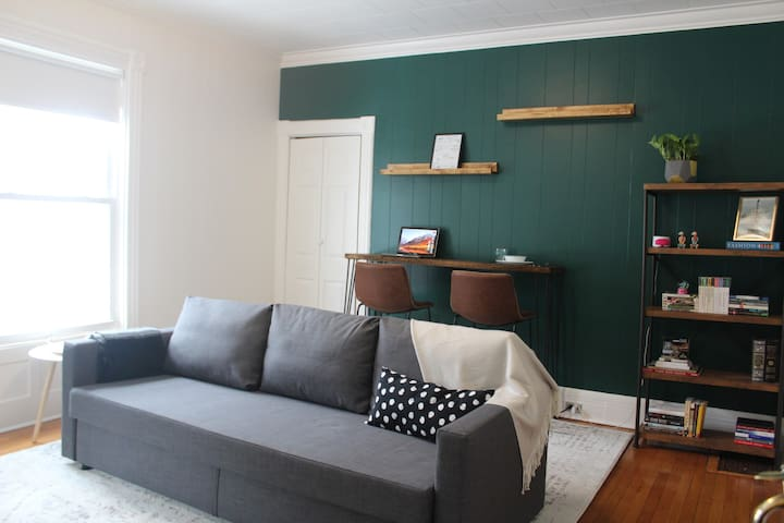 Cozy 1 bdr in the heart of Albany