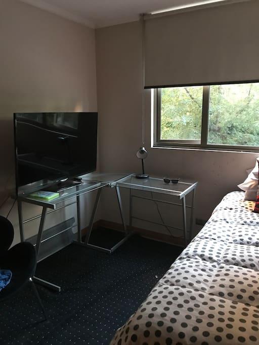 Pieza cama plaza 1/2 con televisor y Wii más Closet y escritorio
