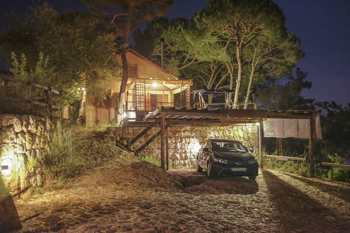 Votre domaine la nuit pour des soirees inoubliables. Systeme d'eclairage complet de la maison, des jardins et du dojo.