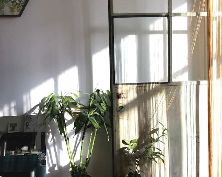 一个设计师的家 双阳台天然阳光空间 两室两厅超优组合