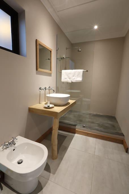 En-suite bathroom consisting of shower, basin, toilet and bidet