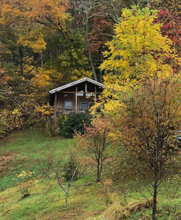 """Earth Conscious"" Retreat in Blue Ridge Mountains"