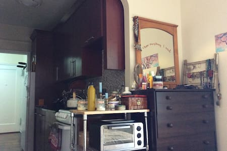 Spacious Crown Heights Studio Apt + adorable cats - Brooklyn - Apartment