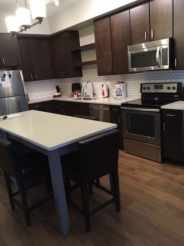 1 BR Apt Downtown MPLS, Better than a hotel!