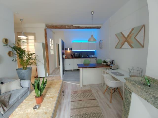Appartement Haussmannien/Centre/Métro Jean Jaures