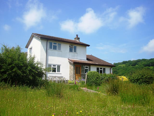 Spacious house on Sugar Loaf mountain-great views - Monmouthshire - House