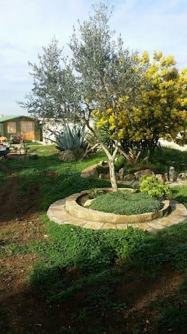 CHALET in legno arredato  con bagno. (PHONE NUMBER HIDDEN) - Salmenta - Cabaña