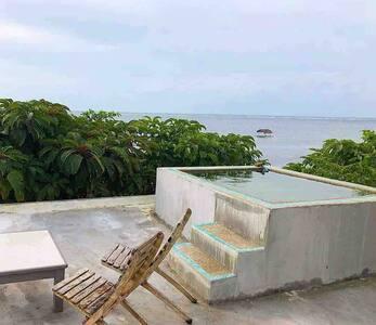Birdland Rooftop Dipping Pool Queen Deluxe AC