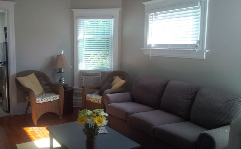 Charming apartment in Arts District - Michigan City - Pis