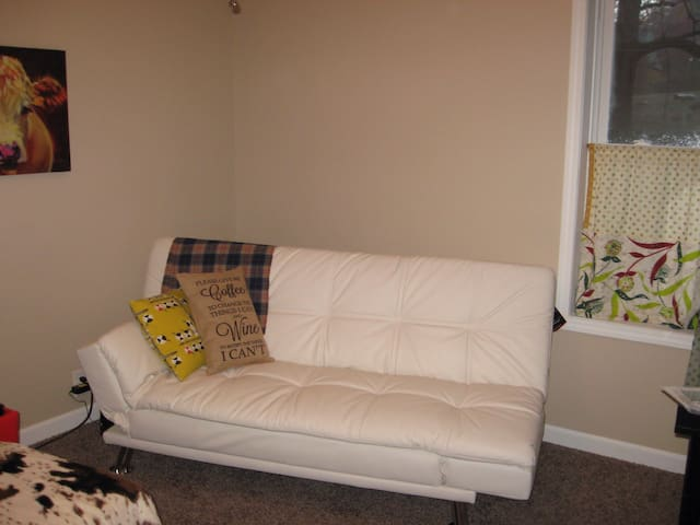 Clean, bright, and comfy home . - Carrollton