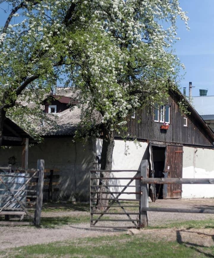 "Barn house ""Teteriv Country"""