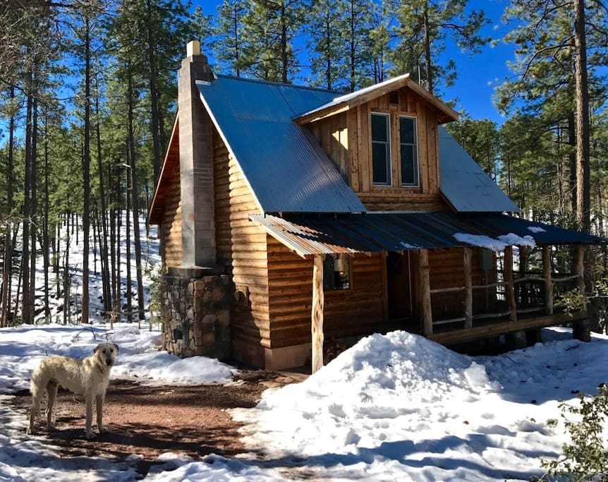 Dead Mule Ranch Cabins For Rent In Payson Arizona