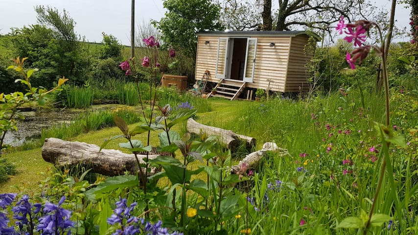 Baggins Shepherds Hut & hot  tub