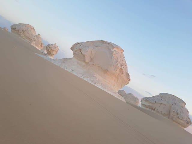 Black and white desert safari trips and camping