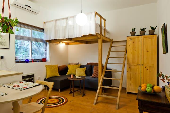 centeral tiny bonk bed studio