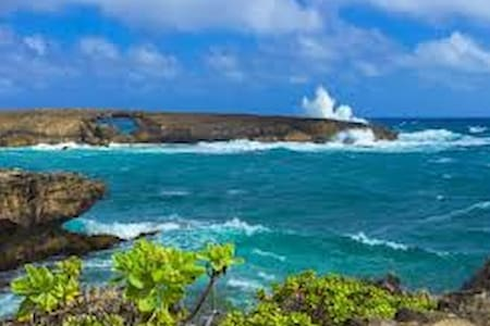 Spring Special Mar/Apr - Laie Point 2 BR Apt. - Laie - Appartement