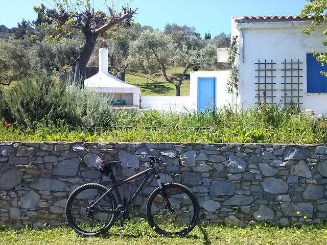 Charming & traditional country home - Skopelos - Хижина