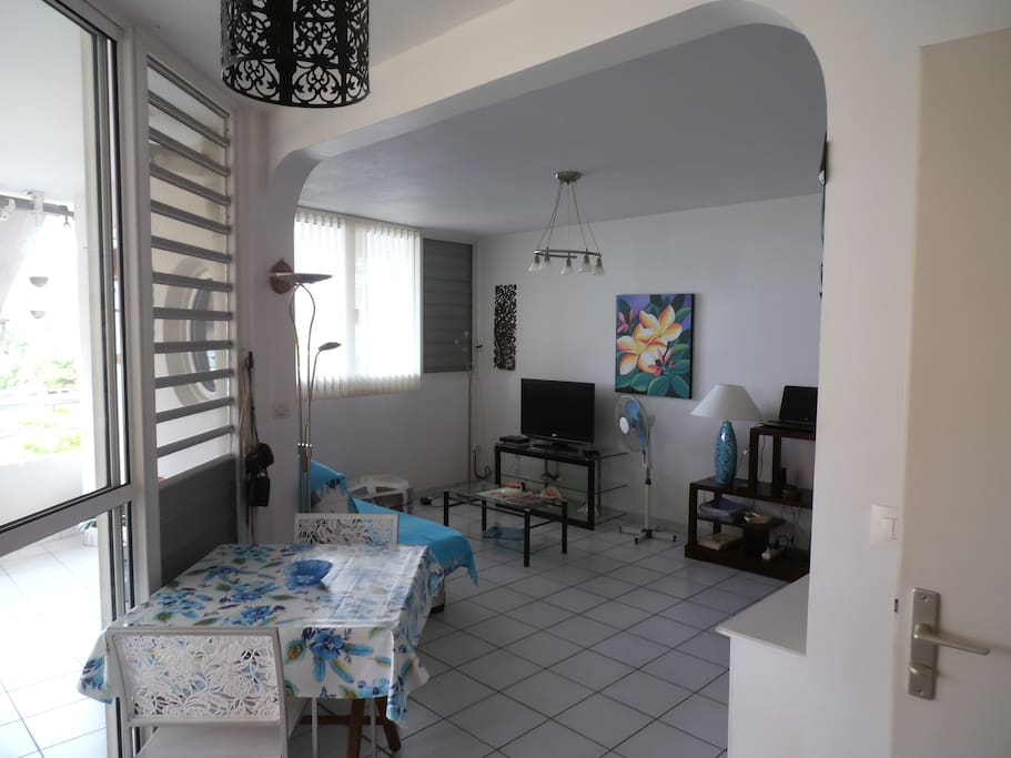 Lumineux salon avec grande baie vitrée ( climatisé)