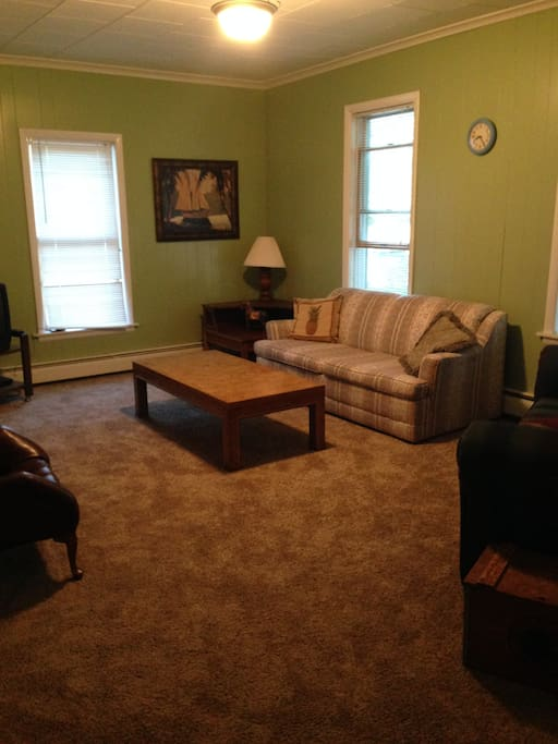 Nice sized living room with pull out couch.